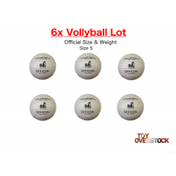 volleyball_6x